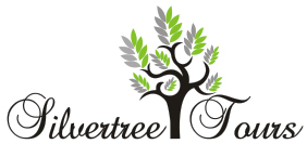 Silvertree Tours
